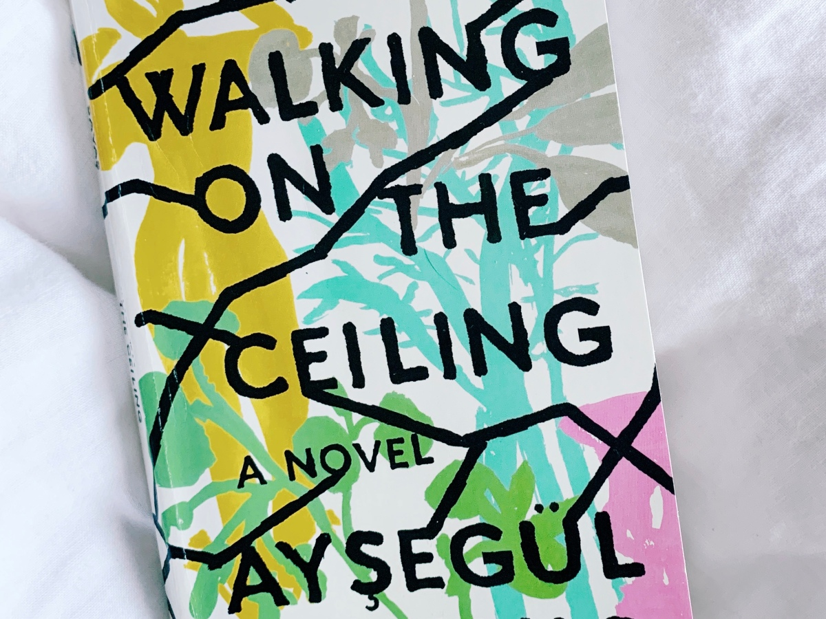 "Photo of the cover of ""Walking on the Ceiling"""
